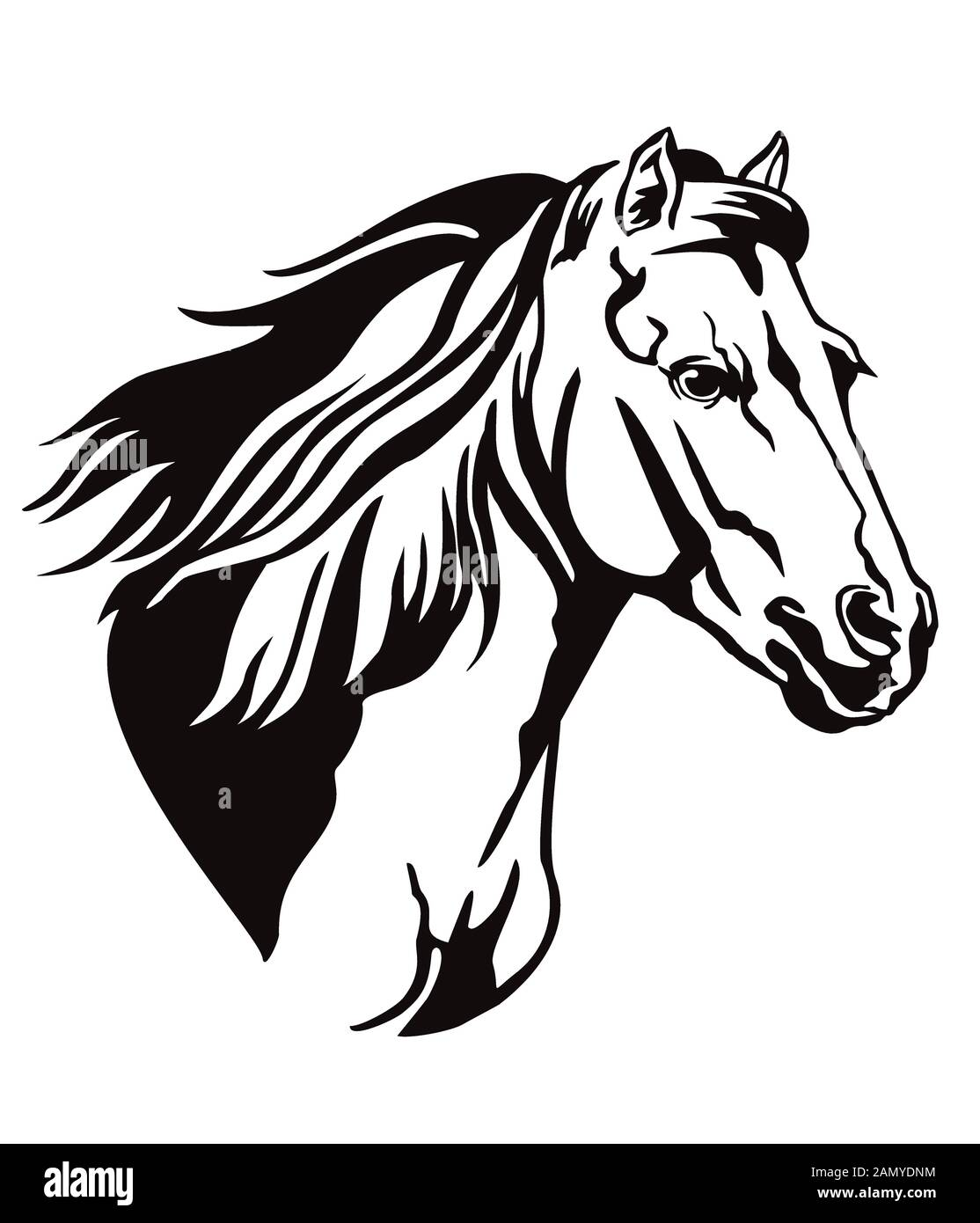 Decorative Monochrome Contour Portrait Of Running Horse With Long Mane Looking In Profile Vector Illustration In Black Color Isolated On White Backgr Stock Vector Image Art Alamy
