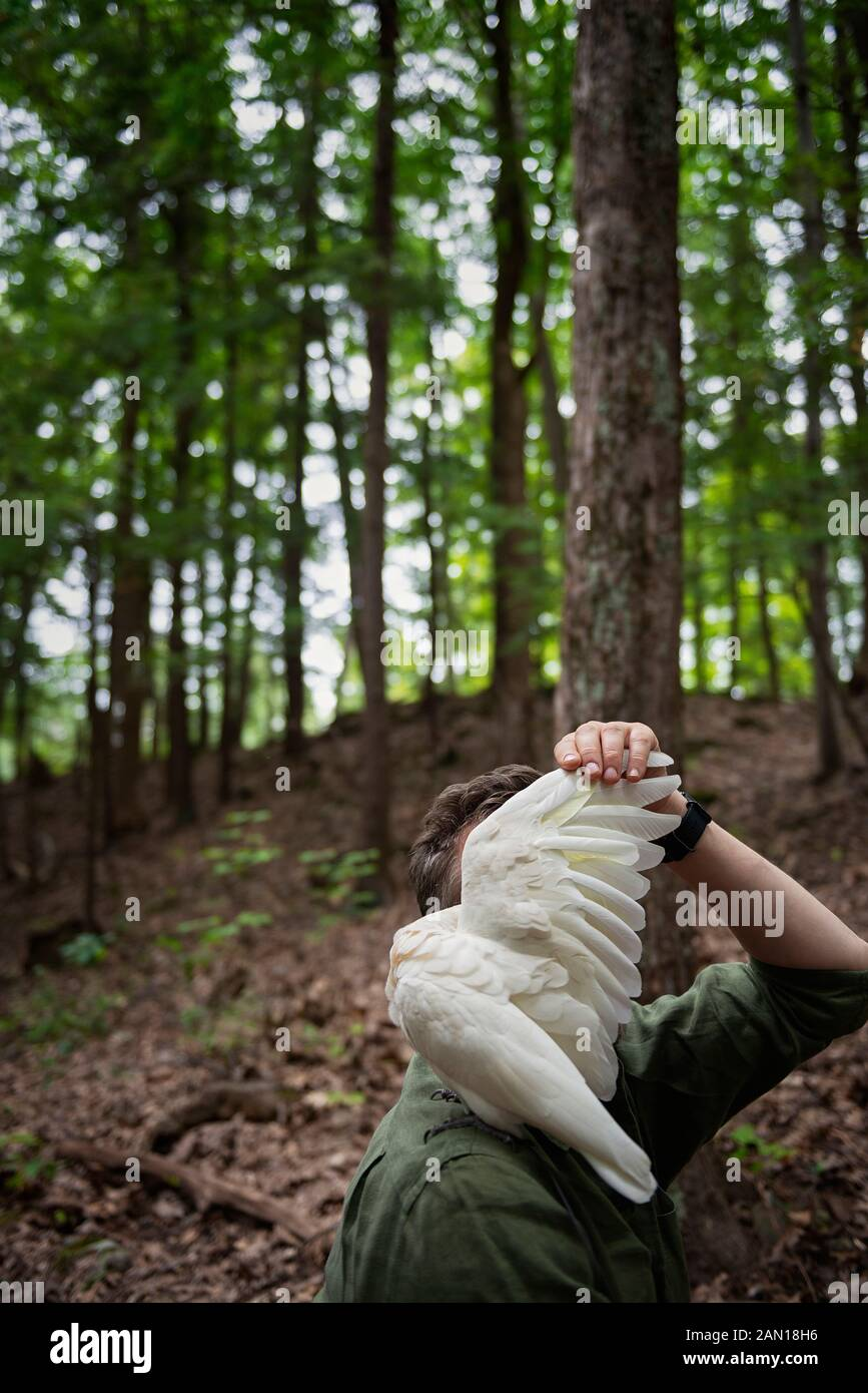 A man with a bird (Little Corella) sitting on his shoulder in the forest. Stock Photo