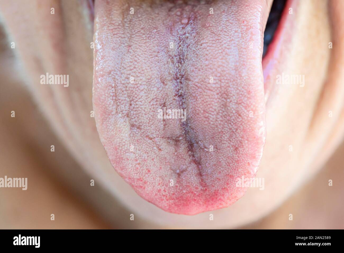 Woman sticks out her covered tongue, tongue and mouth, Germany Stock Photo