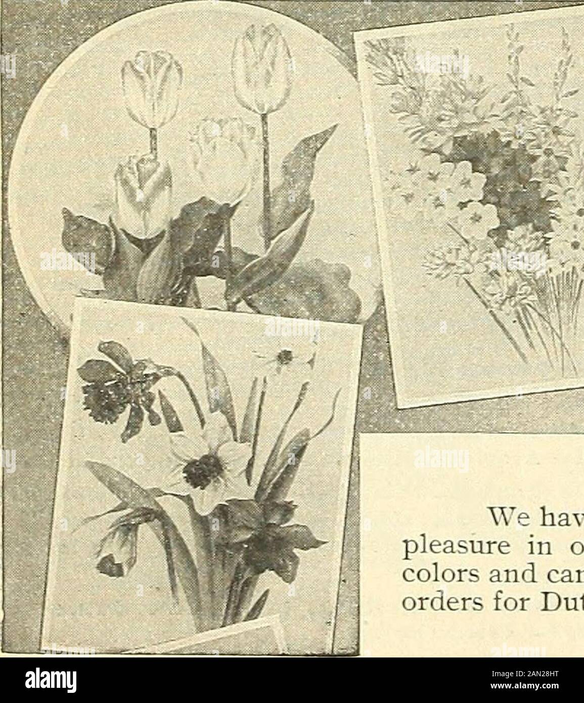 Cabinet Knobs Flower Lillies of the valley Lily #2 Flower