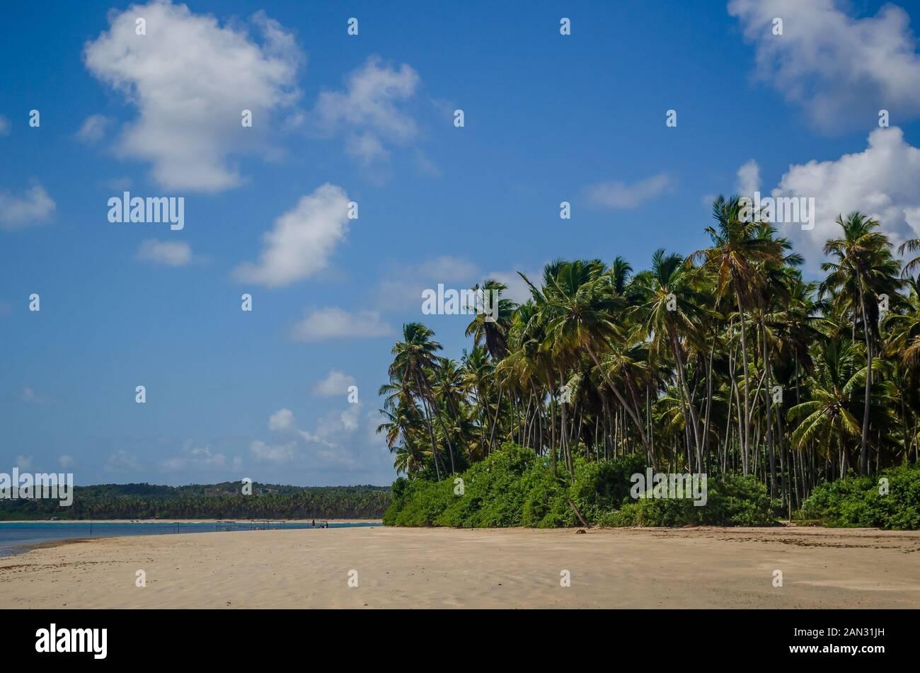 "Landscapes on ""Boipeba Island"", beaches in Bahia, Brazil Stock Photo"