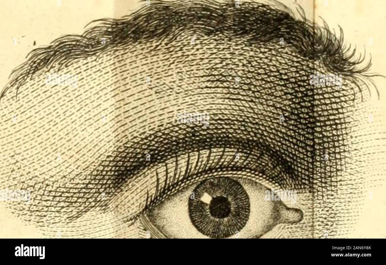 Praktische Abhandlung über die Augenkrankheiten, oder, Erfahrungen und Beobachtungen über die Krankheiten dieses Organs . •<y // Ta6 1/. Stock Photo
