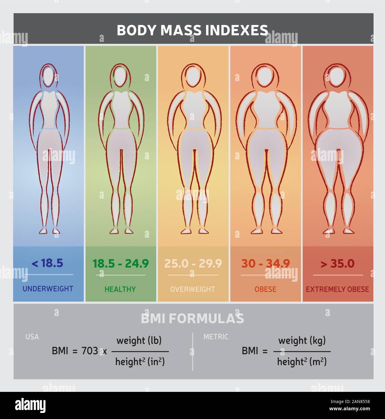 Pictures bmi 22 female BMI FOR