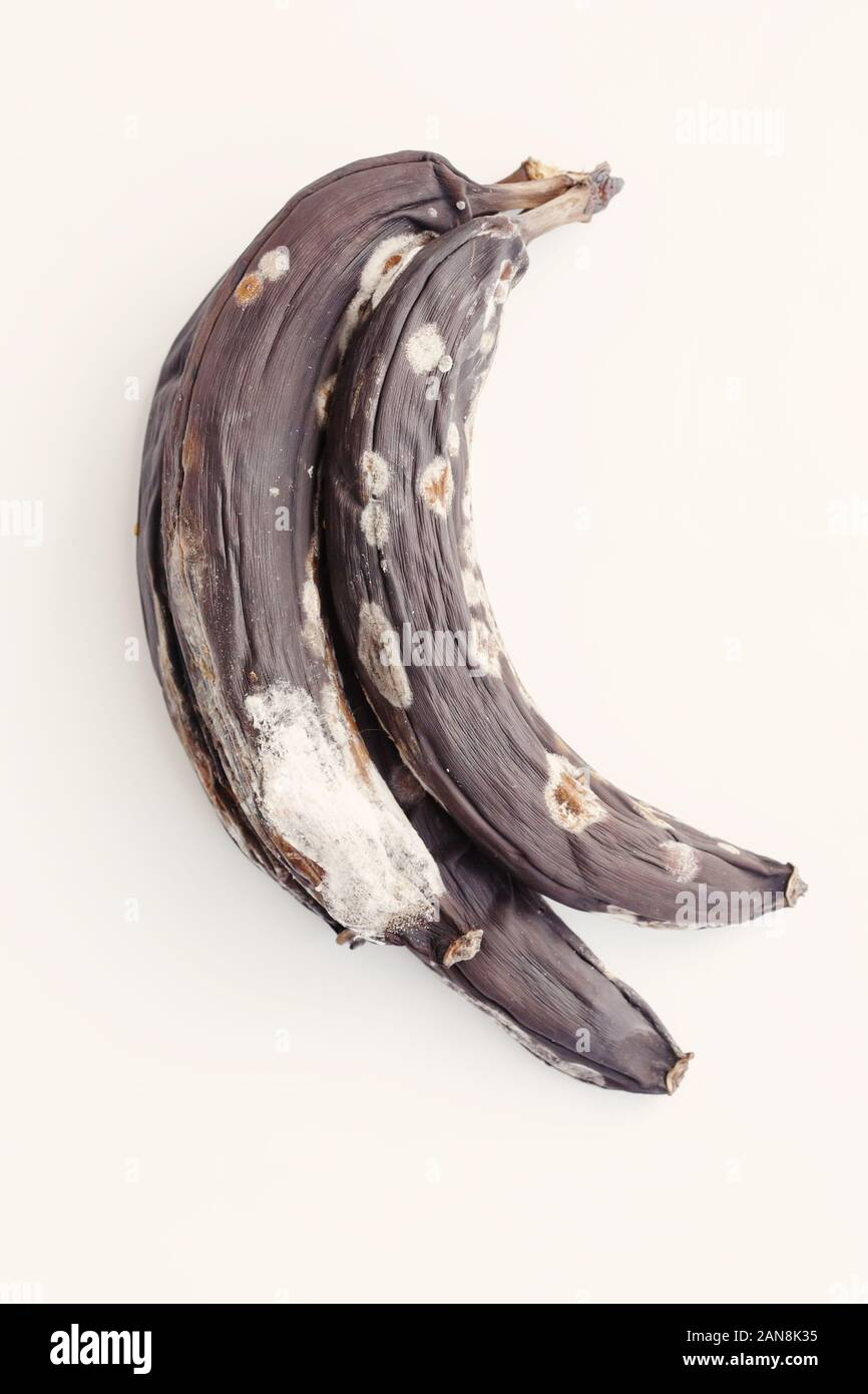 Spoiled Moldy Bananas On White Background Waste Products Stock Photo Alamy