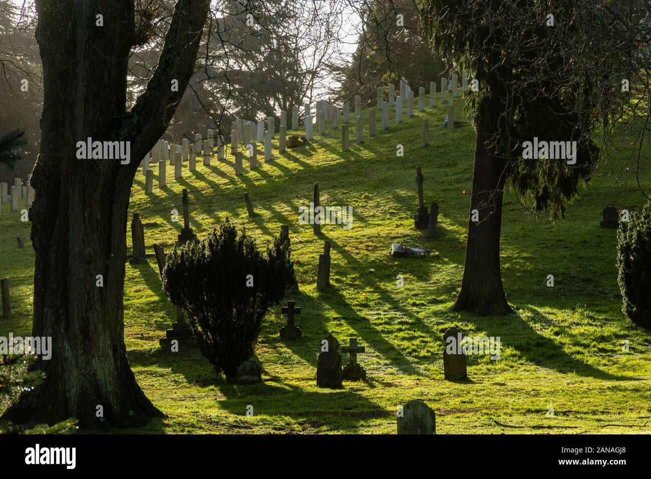 Aldershot Military Cemetery with graves of british and commonwealth servicemen and women, Hampshire, UK Stock Photo