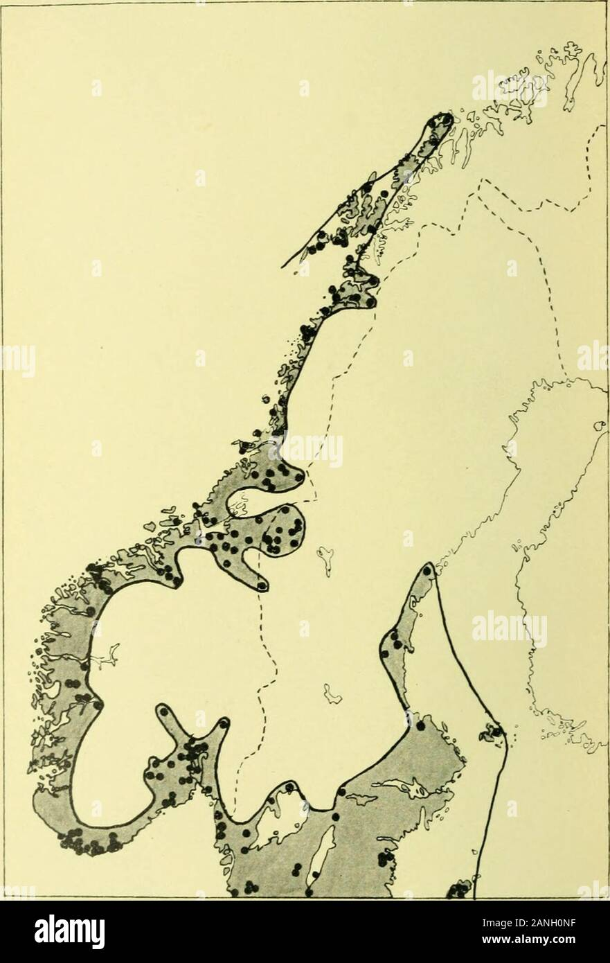 Arkiv For Botanik 6 Batrachium Paucist S Eradicatuma