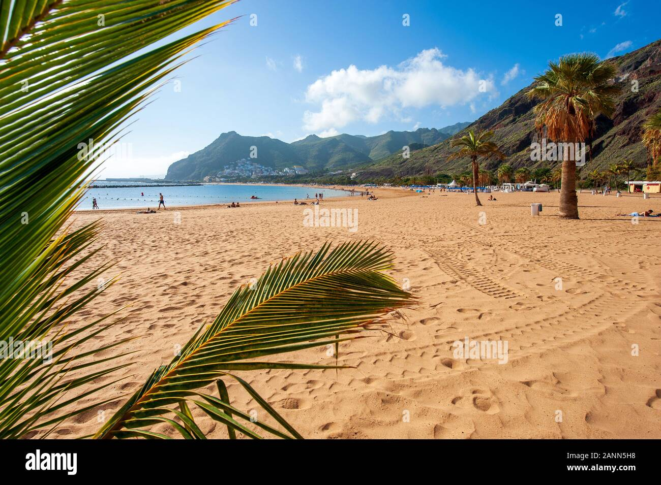 Playa de Las Teresitas is the most beautiful beach on the Canary island Tenerife. The white sand was shipped from the Sahara desert. Stock Photo