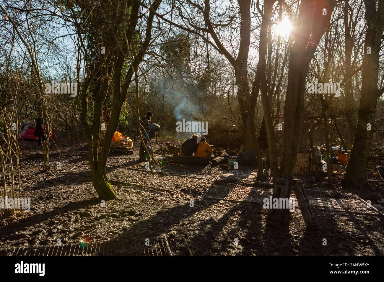 Harefield, UK. 19th Jan, 2020. Conservationists, climate protesters and environmentalists defy the High Court Injunction and stay on site in an attempt to stop the HS2 route and the loss of ancient woodland. Penelope Barritt/Alamy Live News Stock Photo