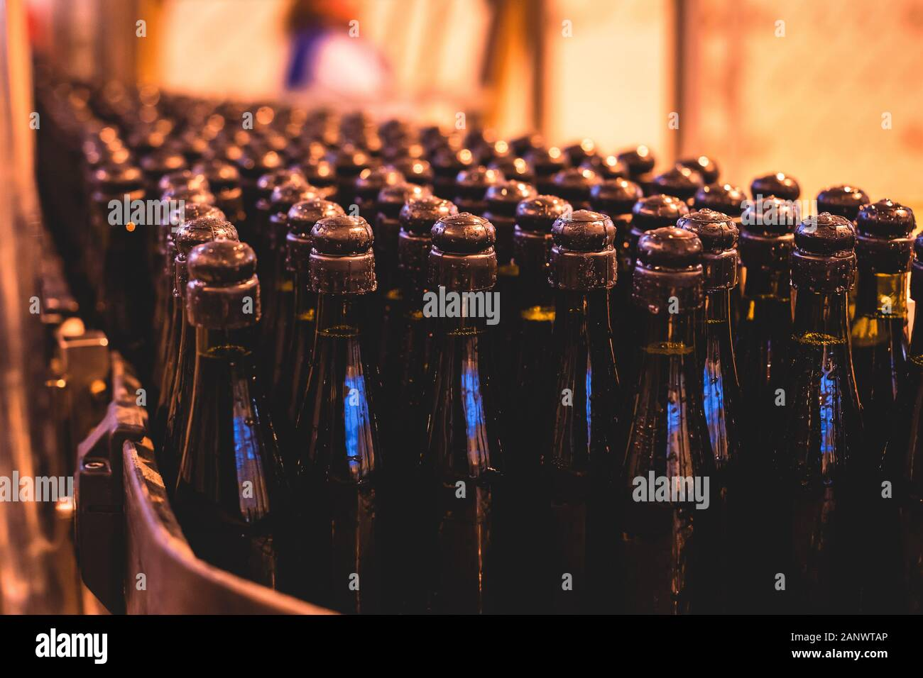 View of glass bottles on the conveyor belt, bottle necks on the production line, brewery equipment, inside wine factory, process of alcohol liquor man Stock Photo