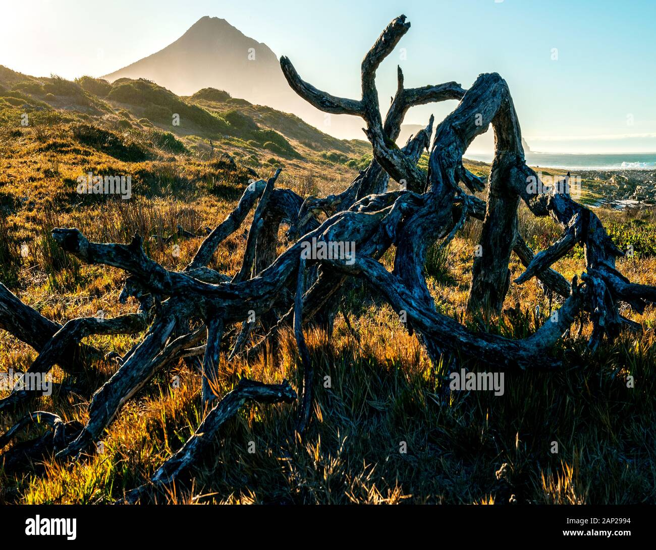 Stunning landscape on the cape peninsula, Southafrica Stock Photo