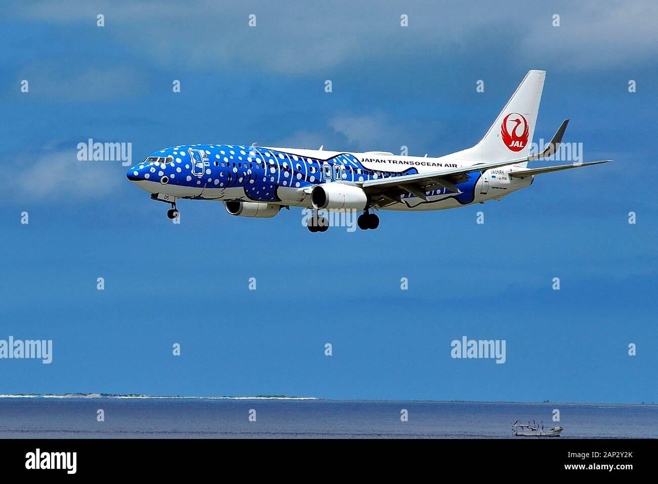 JTA, Boeing,B-737/800, JA05RK, Blue Whale Shark, Landing, Naha Airport, Naha, Okinawa, Ryukyu Islands, Japan Stock Photo