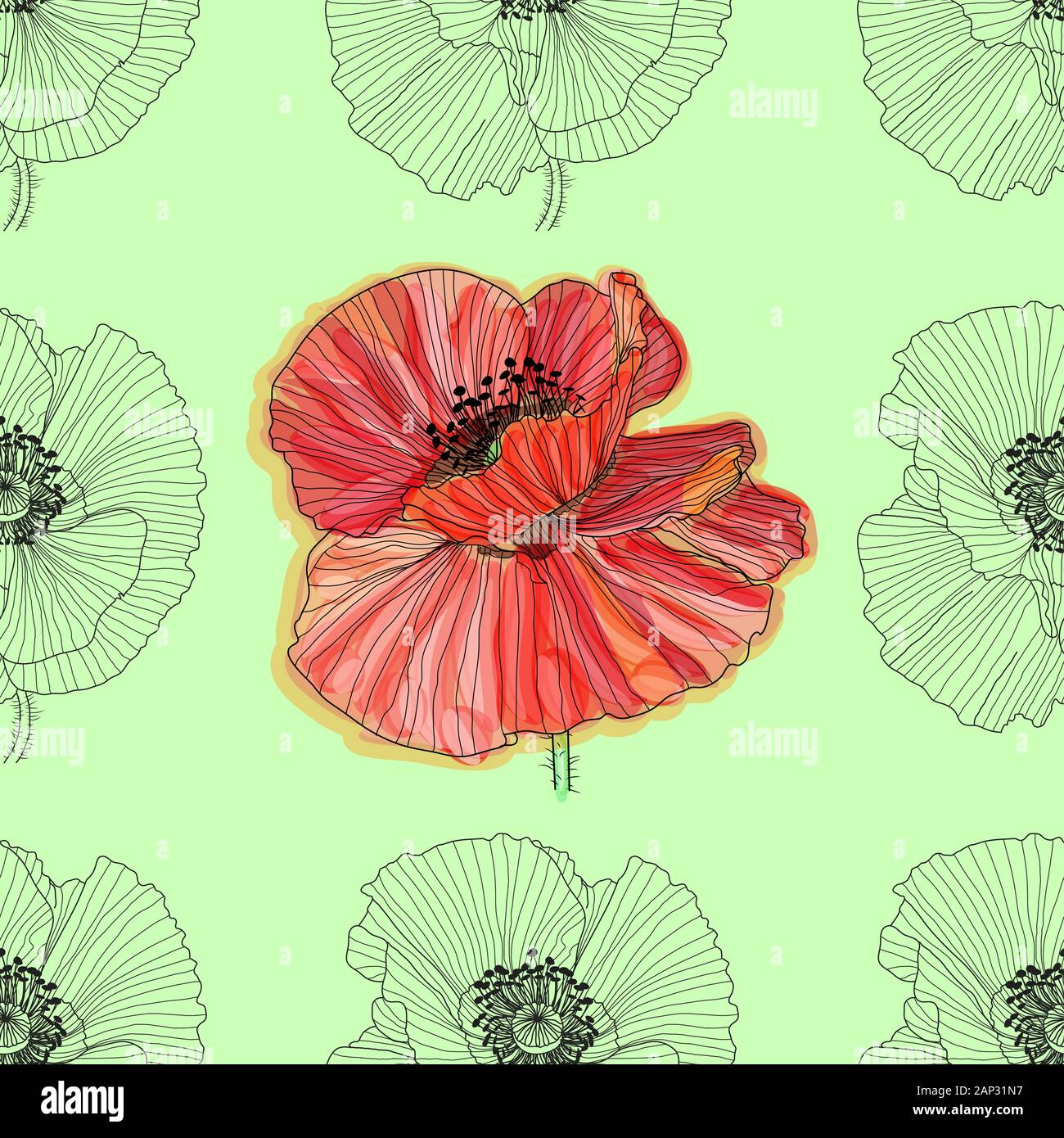 Floral Background With Poppies Seamless Pattern Flourish