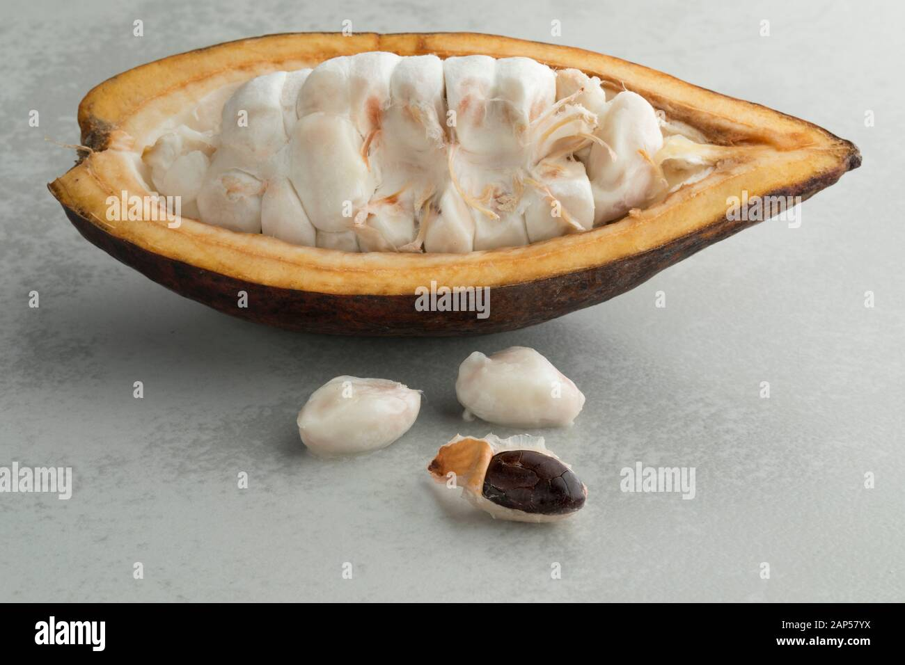 Fresh halved cocoa fruit with raw cocoa beans visible Stock Photo