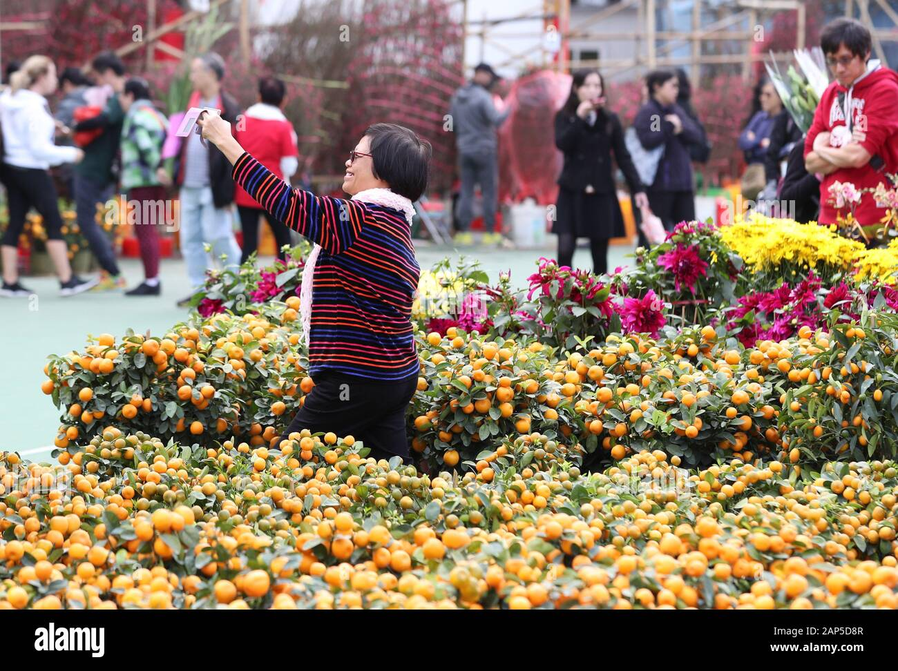 Hong Kong, China. 21st Jan, 2020. A customer poses for a selfie at a flower market to greet the Spring Festival at the Victoria Park in Hong Kong, south China, Jan. 21, 2020. Credit: Li Gang/Xinhua/Alamy Live News Stock Photo