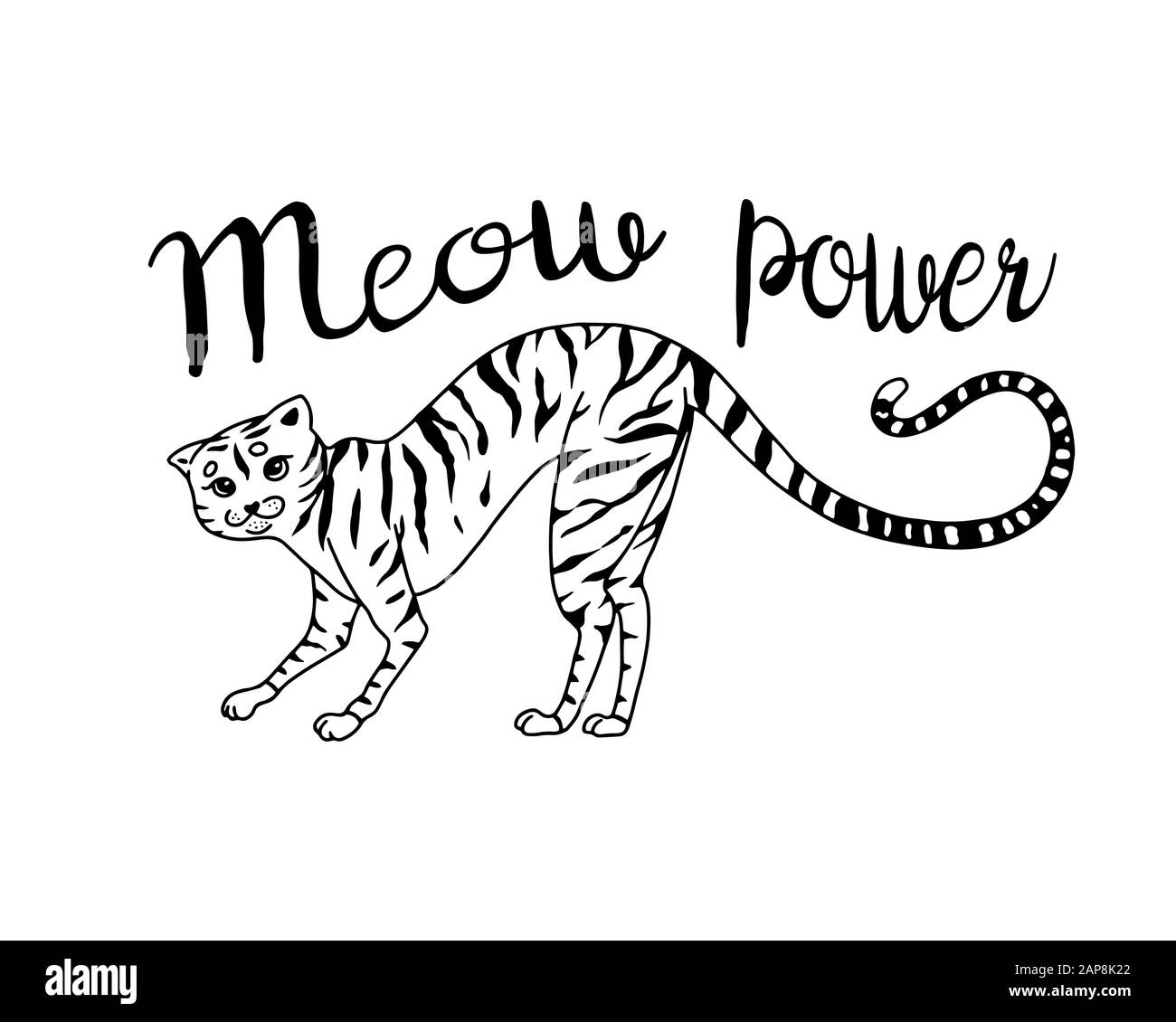 Striped Kitty Cat Meow Power Cute Pet Hand Drawn Engraved Sketch For Logo Or Label Or Banner Or T Shirt Vector Illustration In Outline Vintage Stock Vector Image Art Alamy,Patty Pan Squash