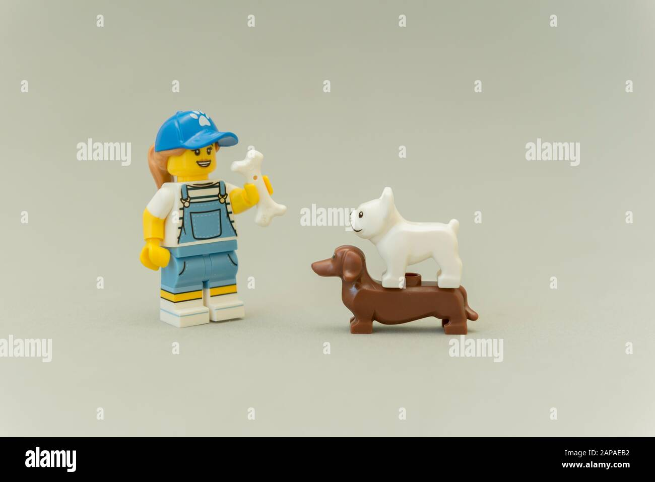 NEW LEGO DOG w//Doghouse bone stick food minifig figure minifigure house