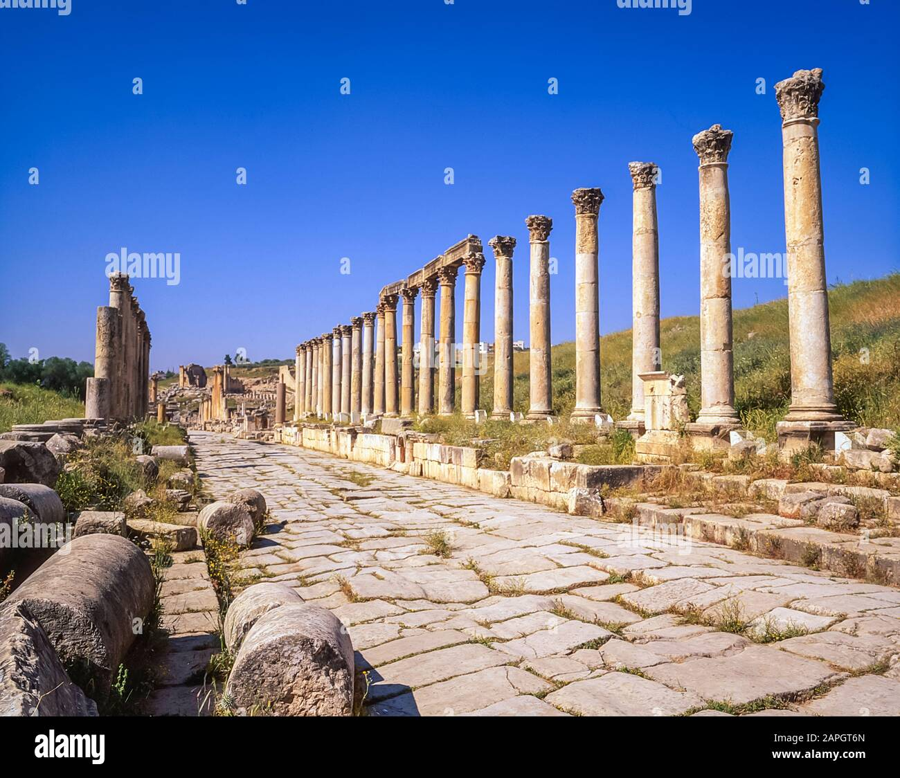 Jordan. Colonnades on the once main street of the ancient Roman City of Jerash not far from the Jordan capital city of Amman in the Middle East Stock Photo