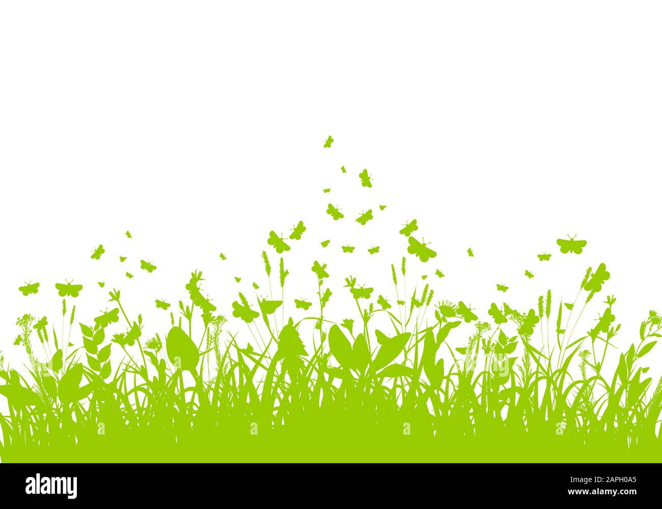 nature background with green grass vector stock vector image art alamy https www alamy com nature background with green grass vector image340892893 html
