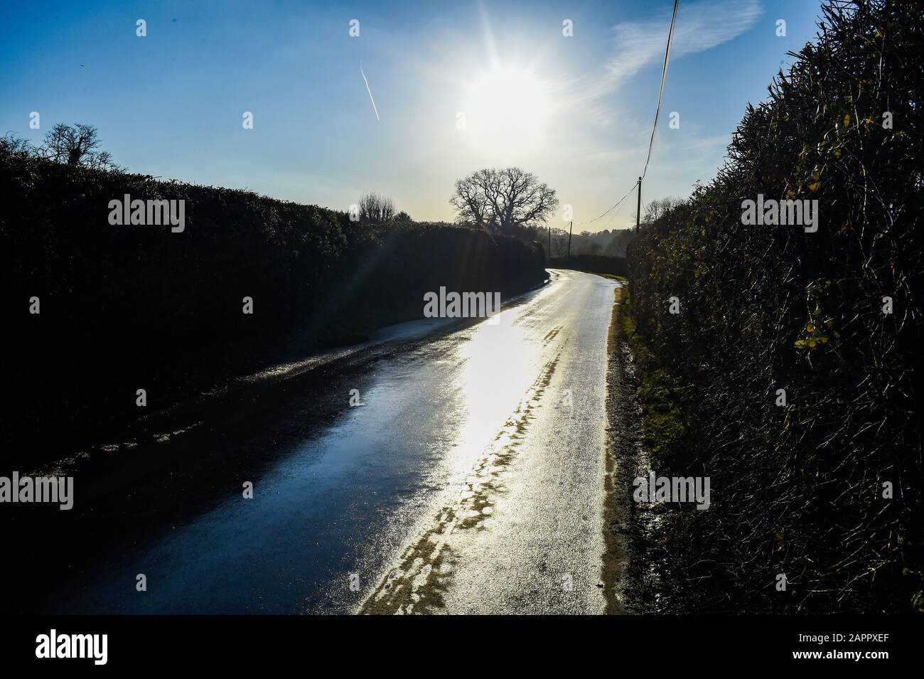 Rural country lane in The New Forest Hampshire UK Stock Photo
