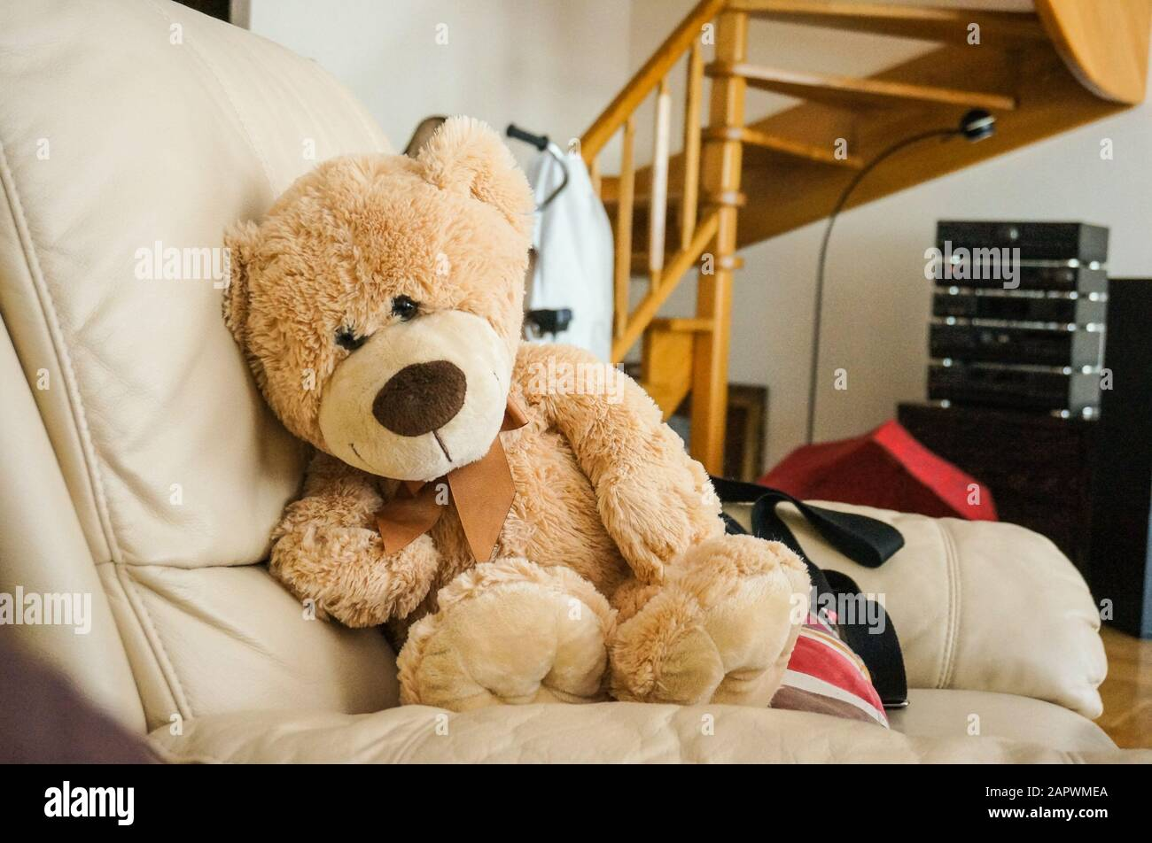 Hay Hay Chicken Stuffed Animal, A Big Fluffy Teddy Bear On The Couch Stock Photo Alamy