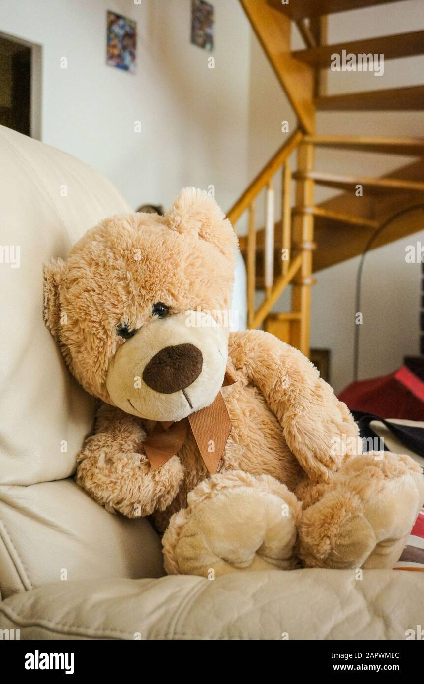 Hay Hay Chicken Stuffed Animal, A Vertical Shot Of A Big Fluffy Teddy Bear On The Couch Stock Photo Alamy