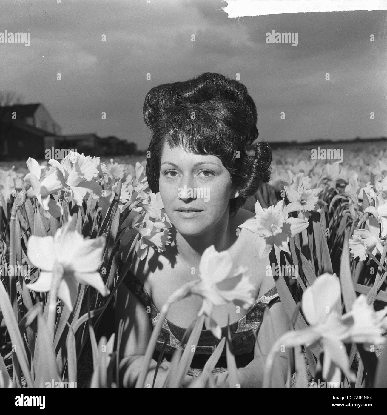 La Ligne Tulpia A New Hairstyle Of The Women S Hairdresser Hans Heemskerk Inspired By Flowers Model Jose With The Hairstyle Date 22 April 1964 Keywords Hairstyles Daffodils Personal Name Heemskerk Hans La