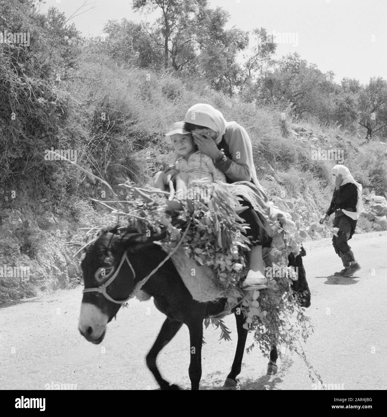 Druznia woman with child on a donkey on a country road. The woman hides the face by hand from the photographer Date: January 1, 1963 Location: Israel Keywords: donkeys, children, transport, roads Stock Photo