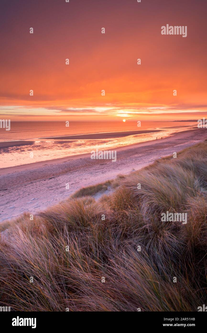 A vivid, bright orange sunrise from the sand dunes above Druridge Bay beach and the North Sea on the Northumberland Coast in winter time. Stock Photo