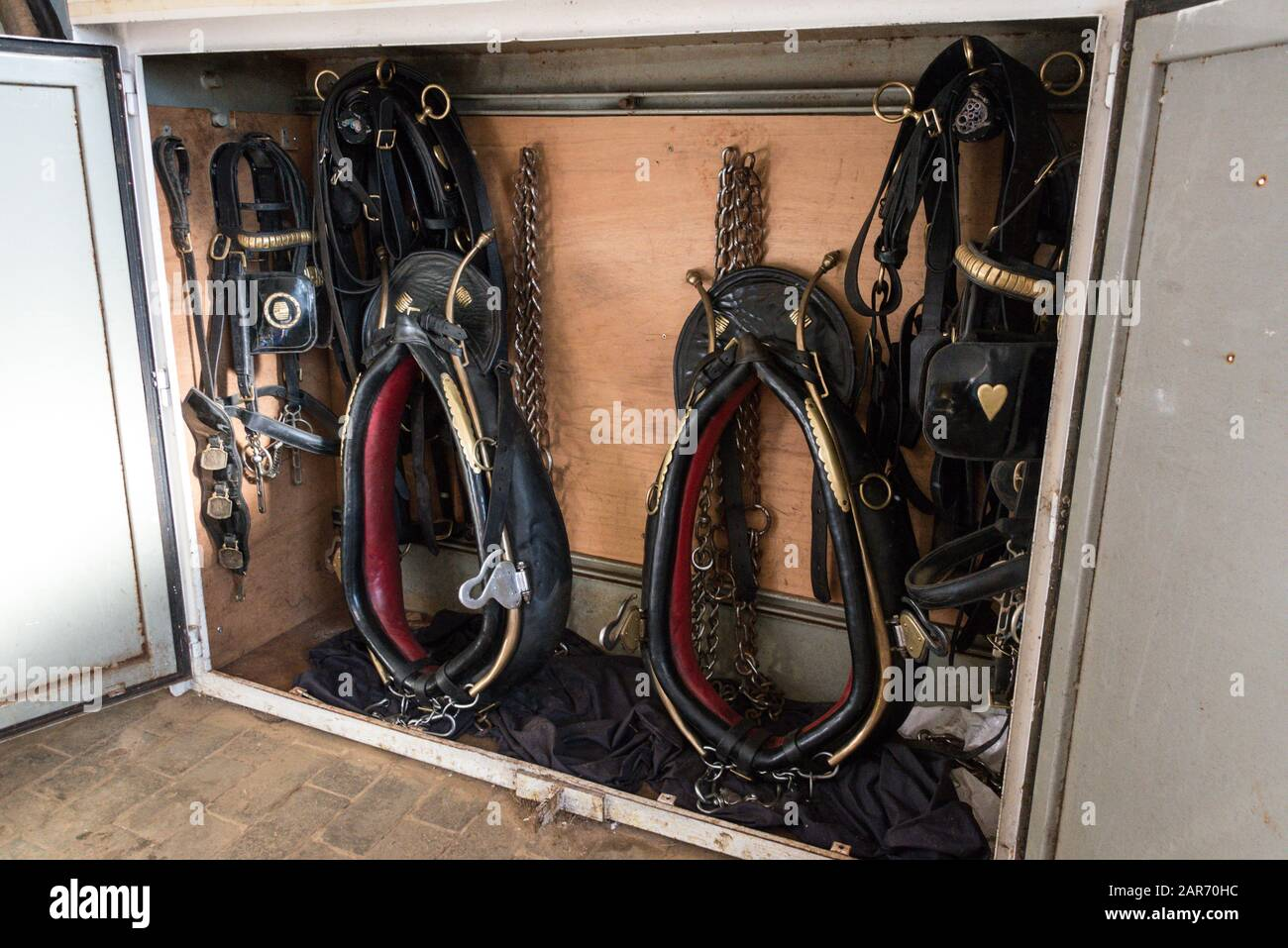 A storage cabinet of Shire horse cart harnesses in the stable tack ...