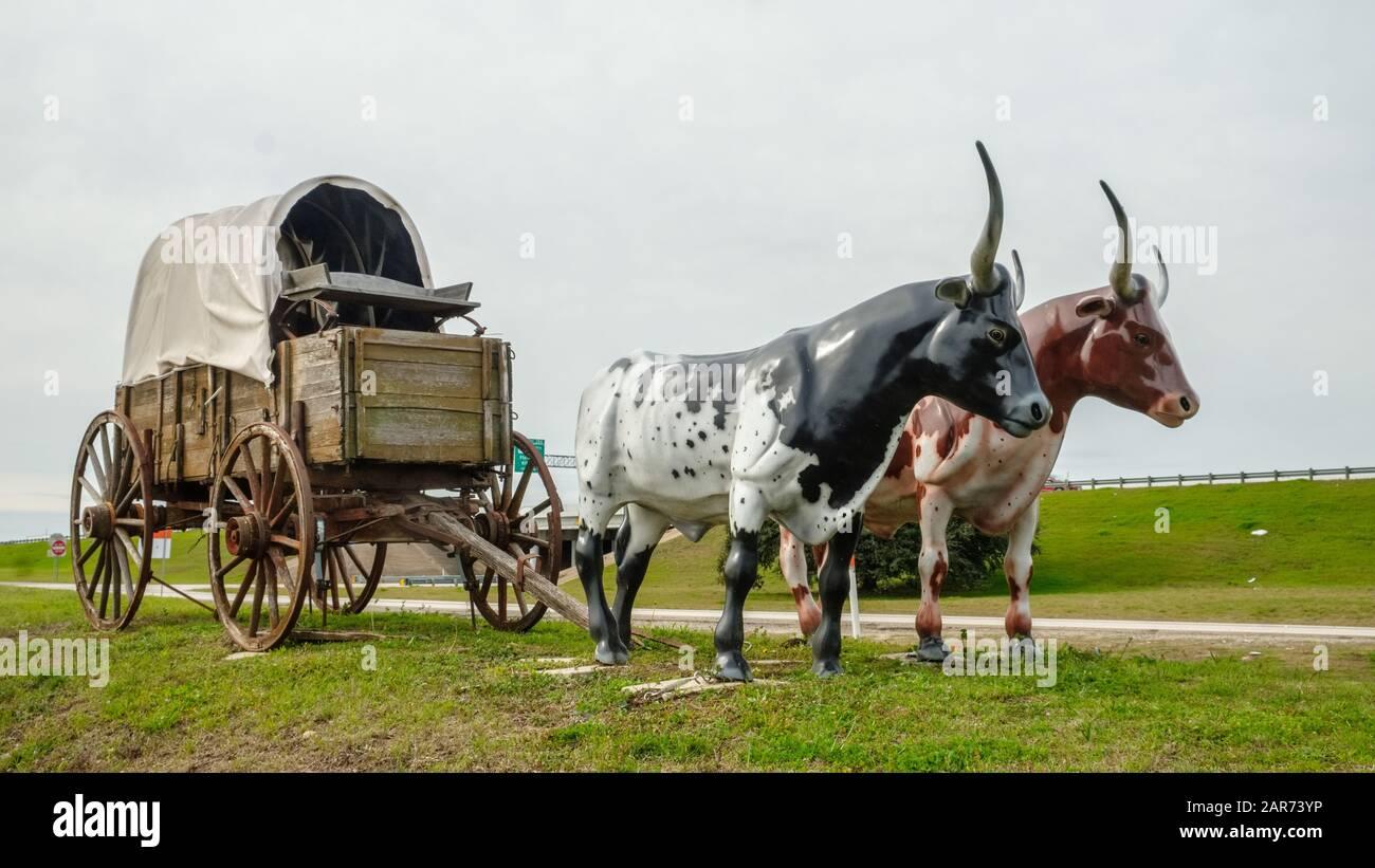 Livestock Wagon High Resolution Stock Photography And Images Alamy