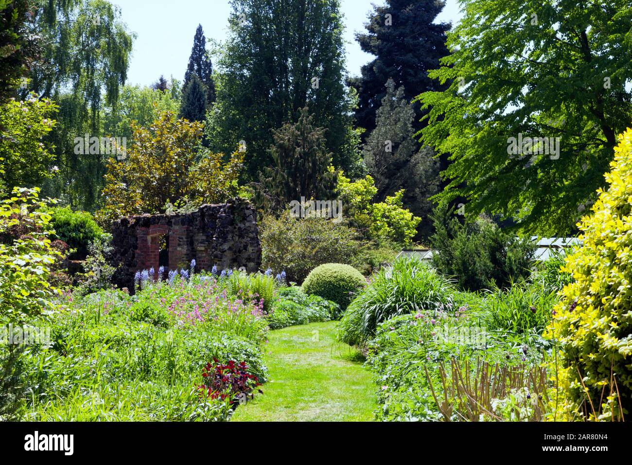 Cottage Flowers Flowering Shrubs And Trees In A Romantic English
