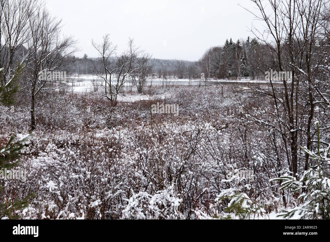 A snowy winter scene of the Sacandaga River near Speculator, NY USA in the Adirondack Mountains. Stock Photo