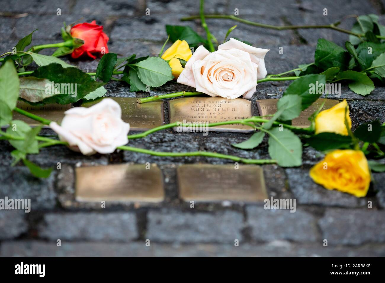 Dresdener Strasse Stock Photos Dresdener Strasse Stock Images Alamy