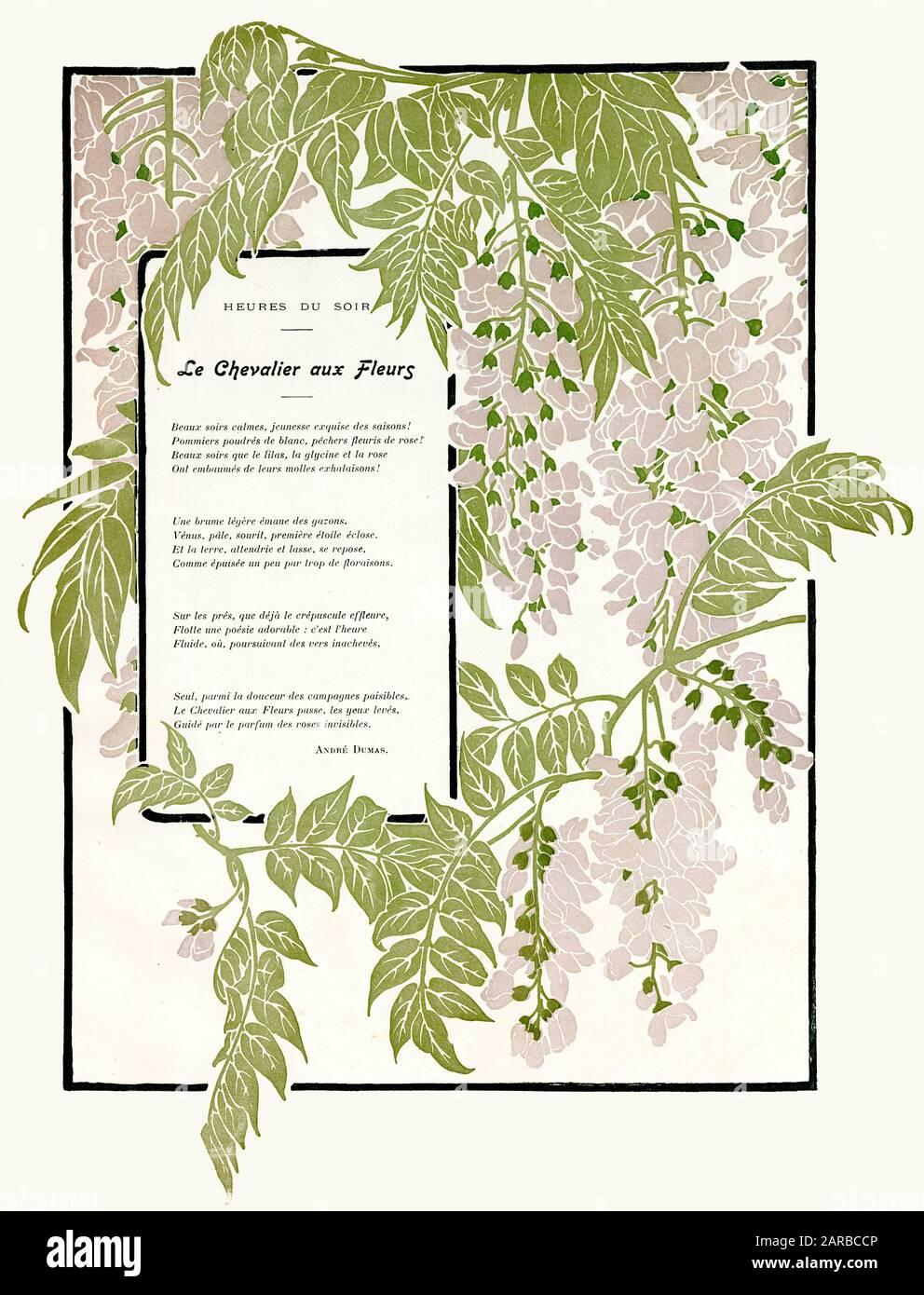 Une Glycine En Pot pale mauve flowers stock photos & pale mauve flowers stock