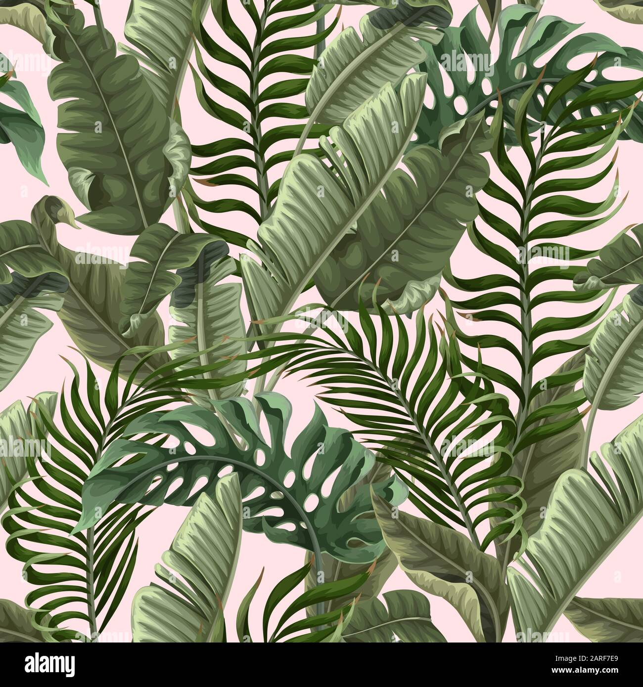 Seamless Pattern With Tropical Leaves On Pink Background Vector Stock Vector Image Art Alamy Low angle view of colorful pink and green tropical leaves of maranta (prayer plant). https www alamy com seamless pattern with tropical leaves on pink background vector image341469249 html