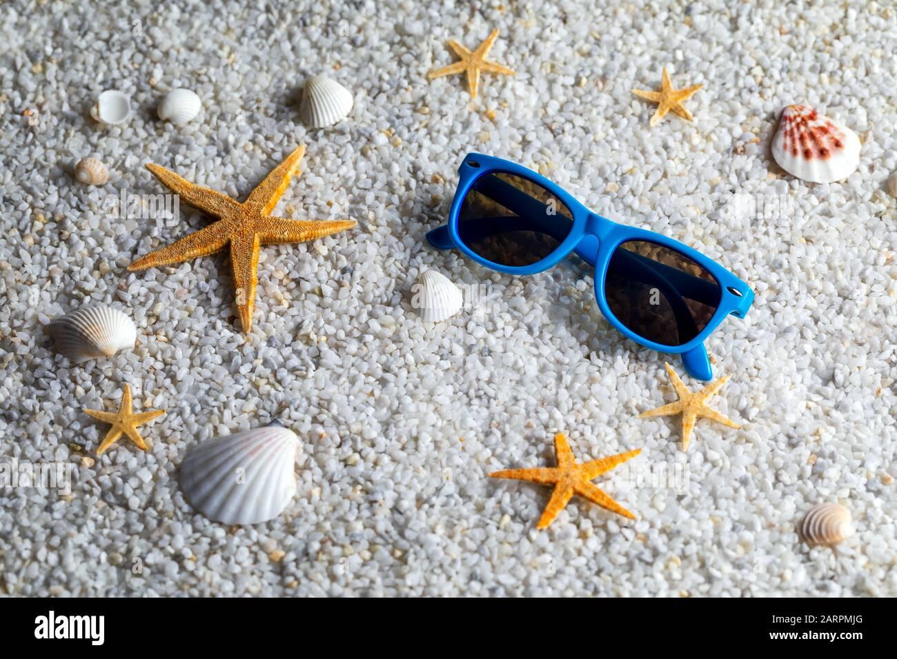 STARFISH SEA STAR+SEA SHELL SEASHELLS GLASSES SUNGLASSES-OCEAN COSTUME-DRESS UP