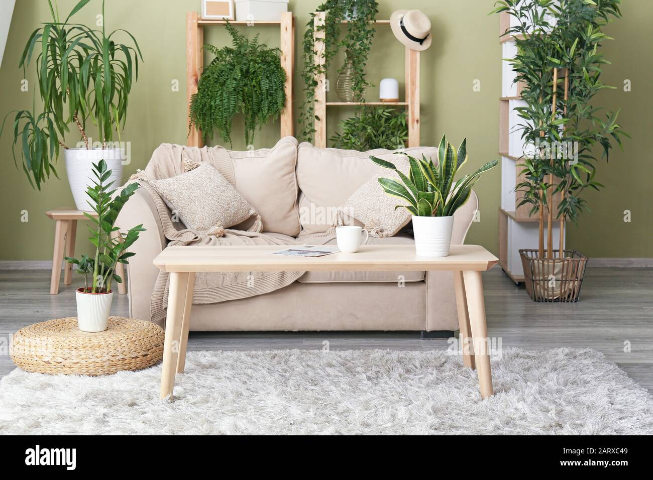 Interior of modern living room with green houseplants Stock Photo ...