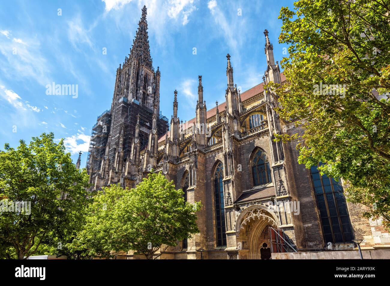 Ulm Minster or Cathedral of Ulm city, Germany. It is a famous landmark of Ulm. Panorama of ornate facade of Gothic church in summer. Scenery of mediev Stock Photo
