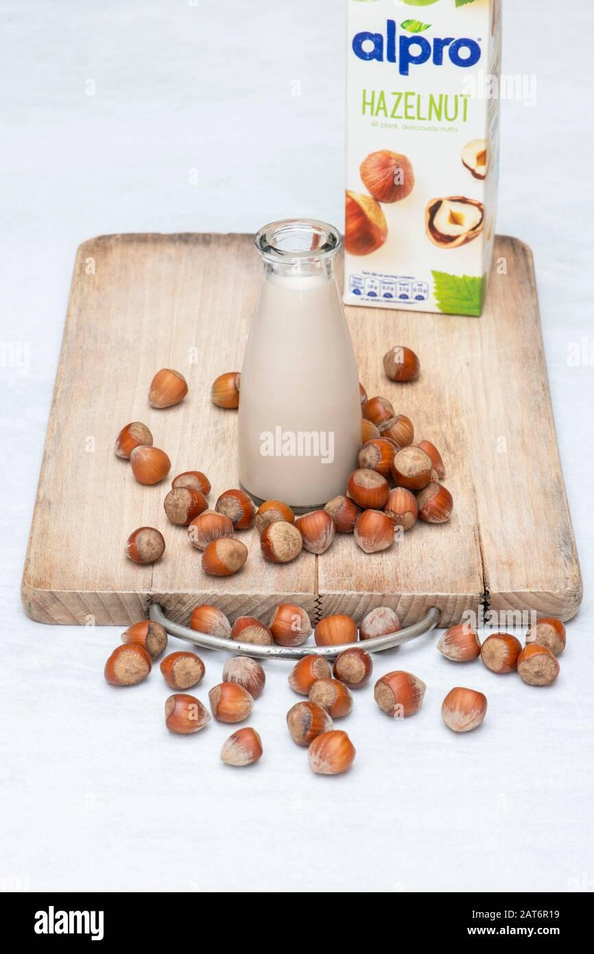 Vegan plant based milk alternatives. Hazelnut milk with hazelnuts on a wooden board Stock Photo