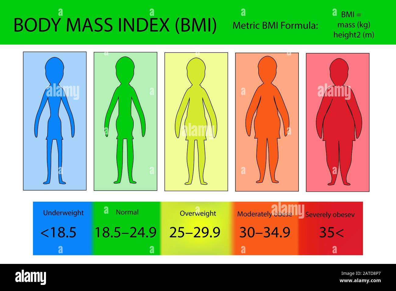 Frau 5 bmi 24 BMI berechnen: