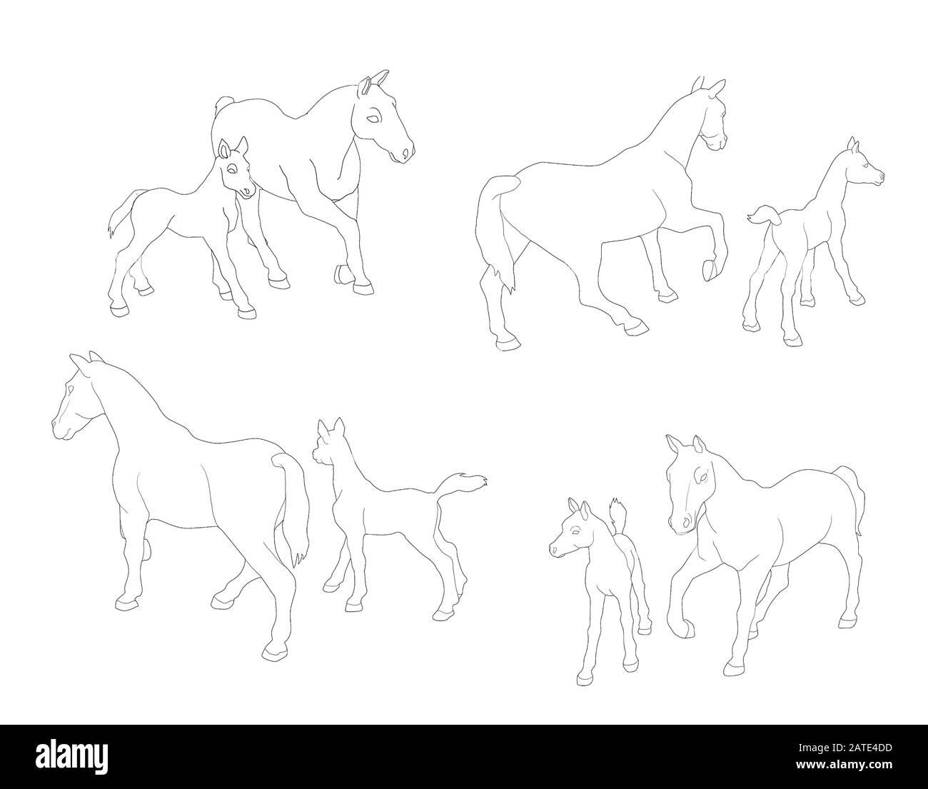 Horse Illustration Realistic Drawing Design Stock Photo Alamy