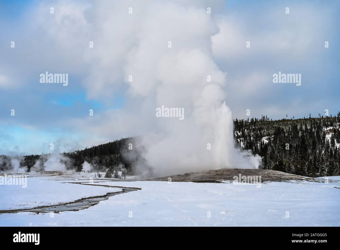 The Old Faithful geyser erupts in a winter day, spewing steam and hot water high in the sky. Yellowstone National Park, Wyoming, USA. Stock Photo