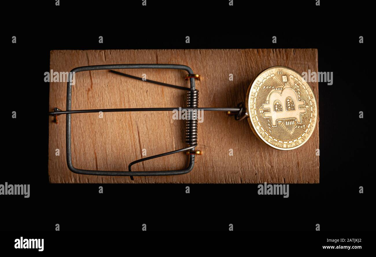 Bitcoin coin in a mousetrap isolate on a black background. Stock photo bitcoin news. Stock Photo