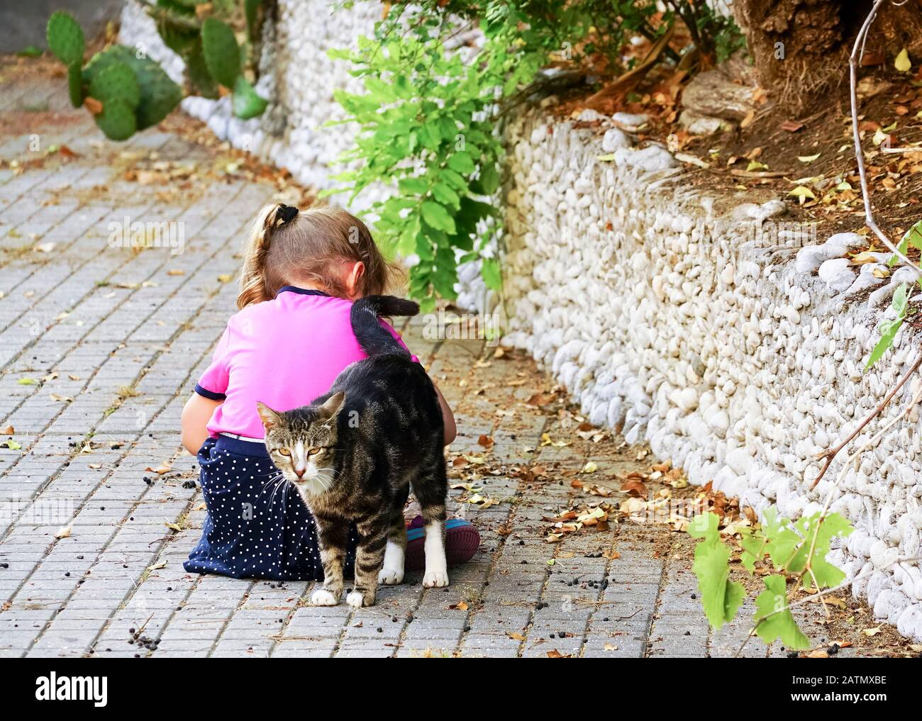 The cat snuggled up to the sitting girl on the street . Yalta. Crimea. Stock Photo