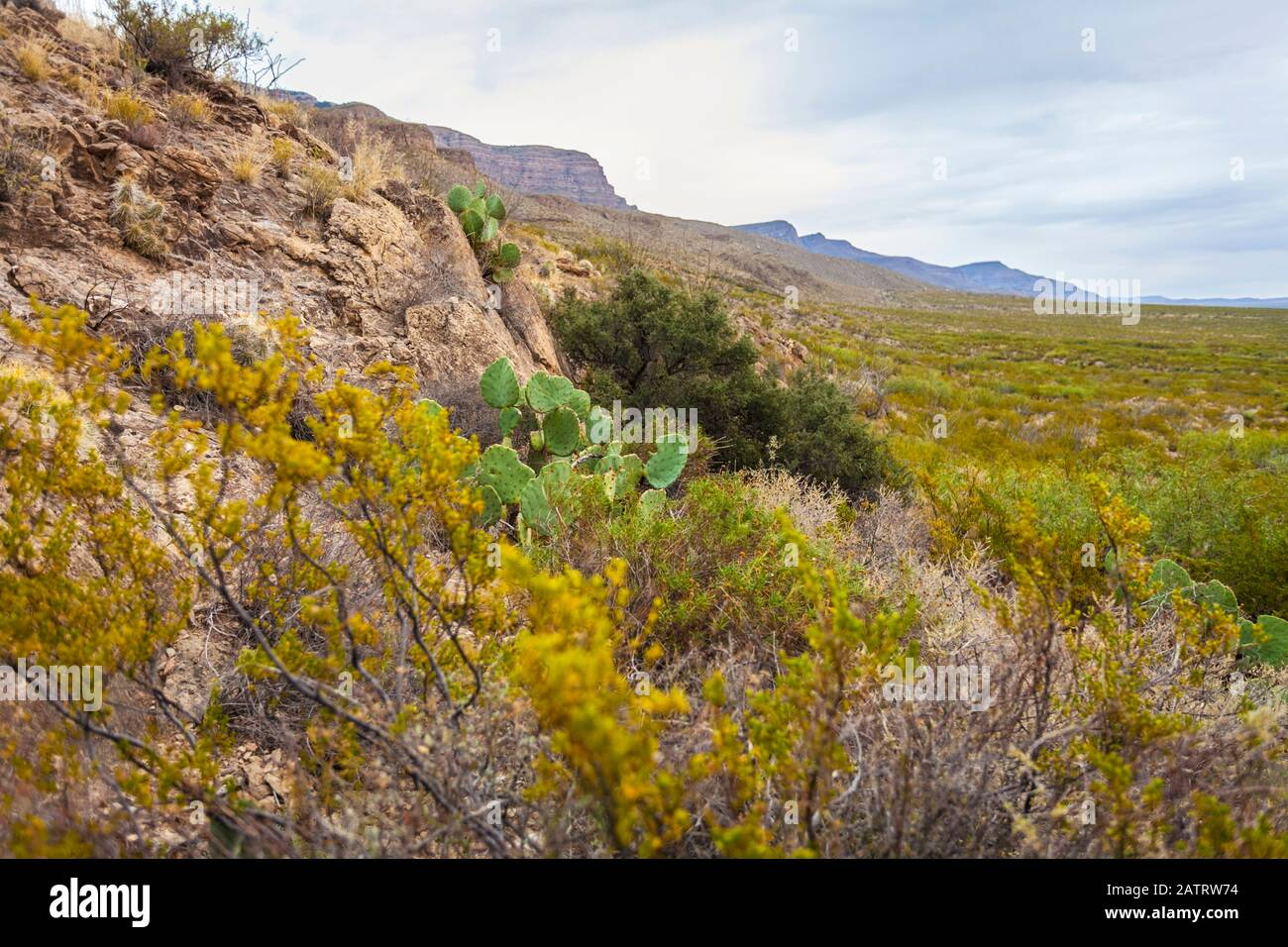 Dog Canyon National Recreational Trail, Sacramento Mountains, Chihuahuan Desert in the Tularosa Basin, Oliver Lee Memorial State Park Stock Photo