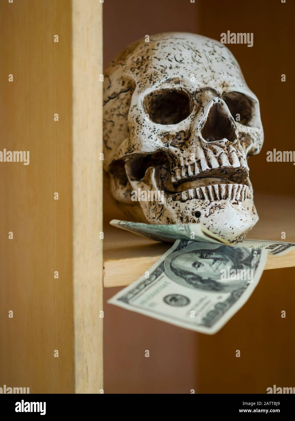 Money skull and dollars paper banknotes bellow Stock Photo