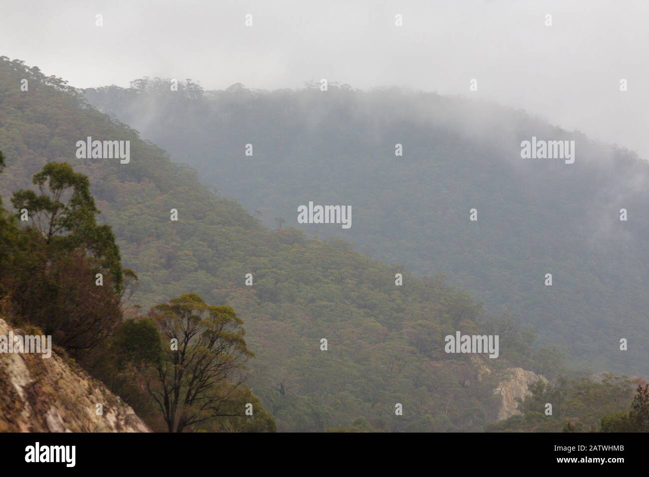 hills covered in Australian bush shrouded in cloud on the hume highway from sydney to melbourne Stock Photo