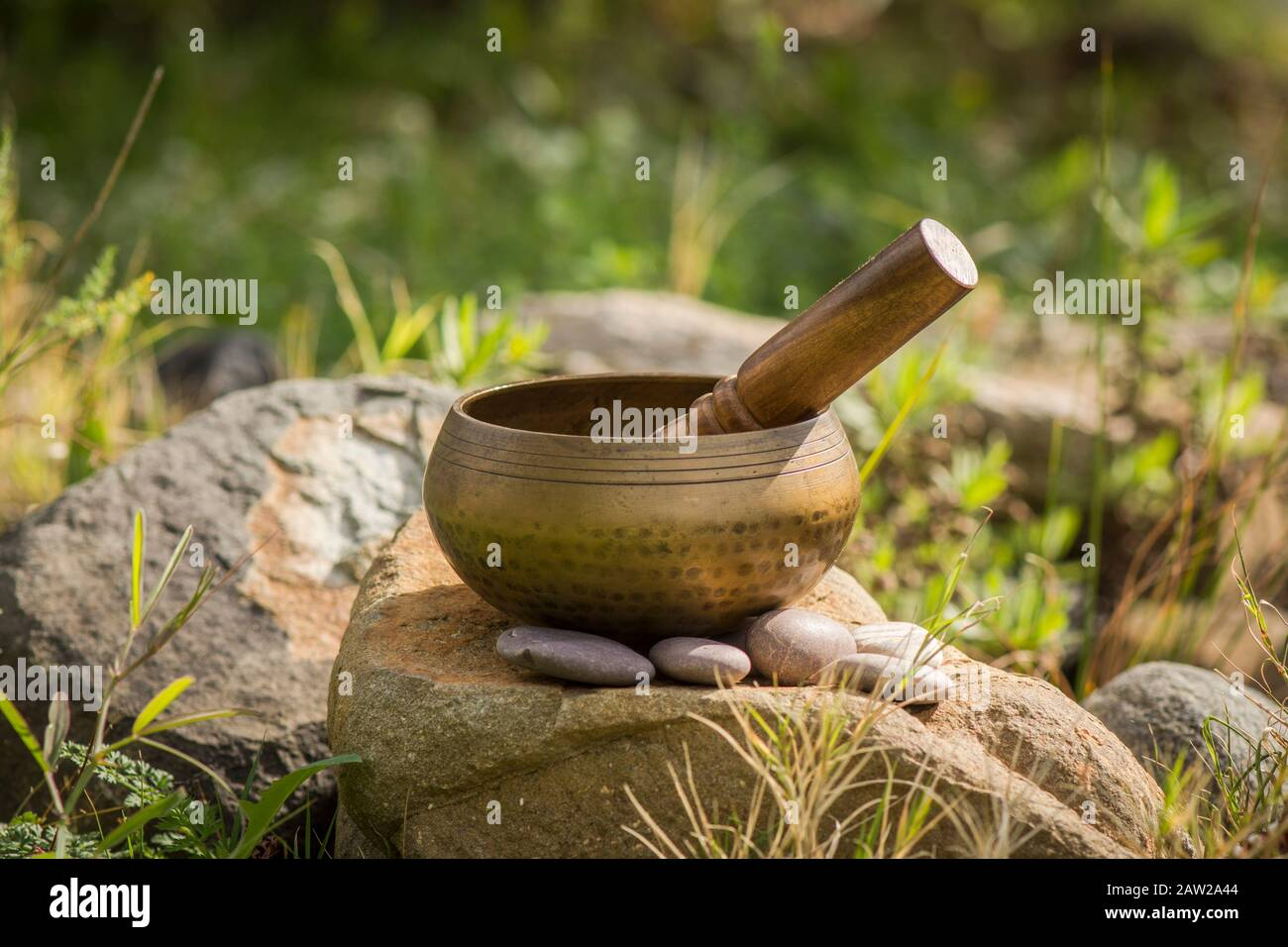 Singing bowl, buddhist instrument used in sound therapy, Tibetan Singing bowl. next to pond. Stock Photo