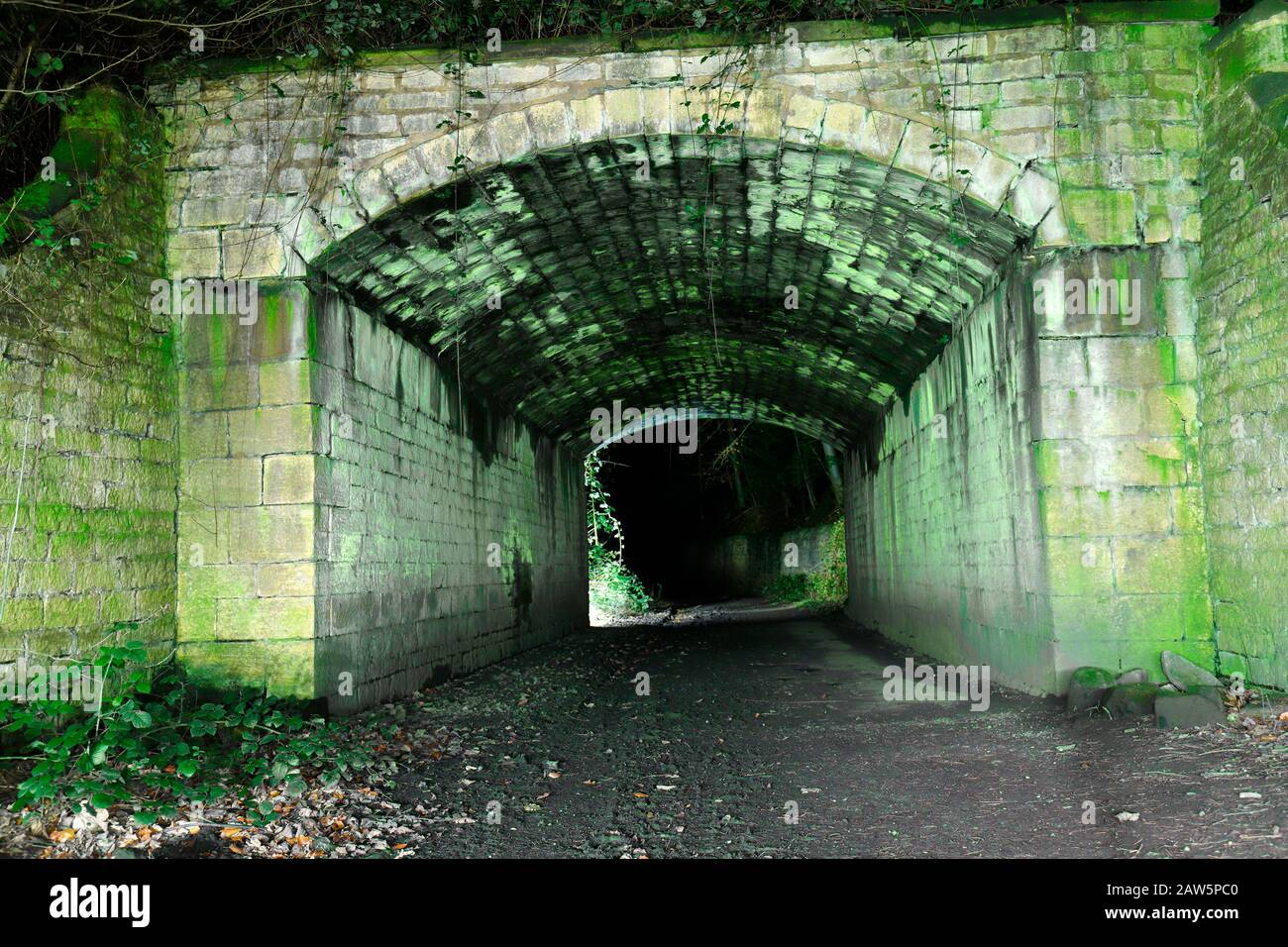 A tunnel along a footpath in Parlington Woods, in Aberford that was used miners. Stock Photo