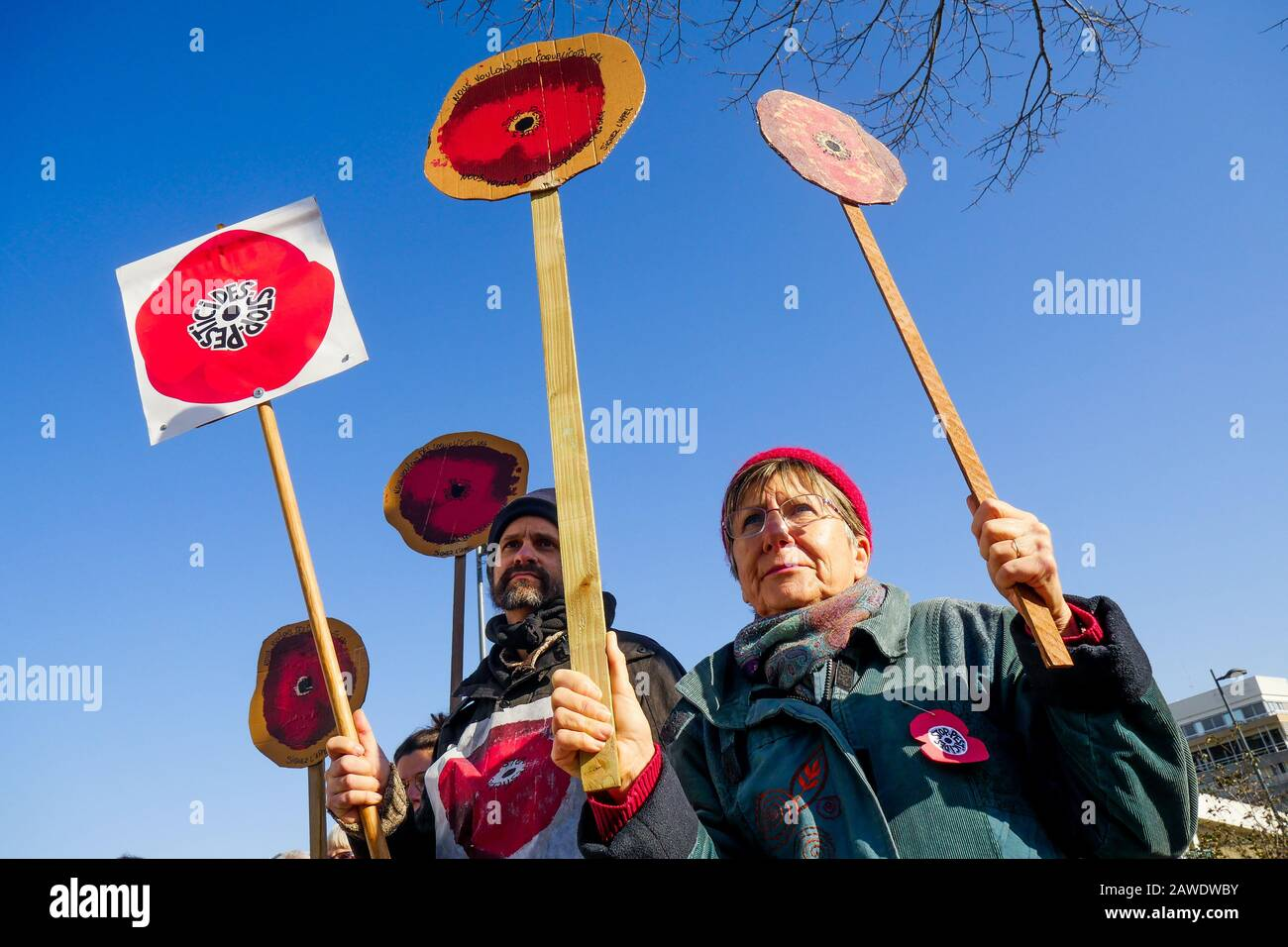 """Nous Voulons des  Coquelicots"" activists protest against protest againts the use of SDHI pesticides, Lyon Gerland, France) Stock Photo"